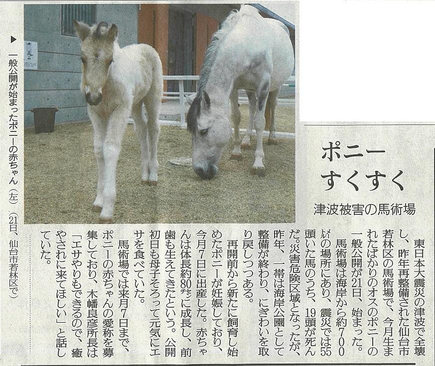 読売新聞(宮城版)に海岸公園馬術場で誕生した仔馬が掲載されました